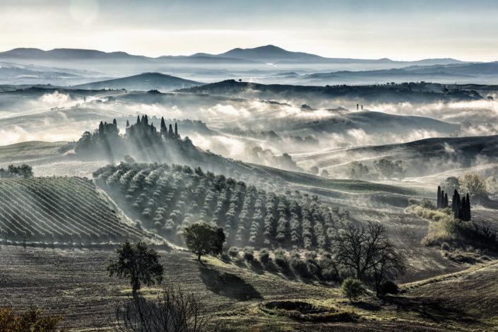aktuelle Workshops, Workshops, Tuscany, Toskana, Fotograf, Ernst Merkhofer, sunrise,Nebel, Cypressen, Belvedere, Olive, Trees, Toskana
